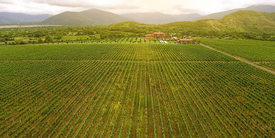 Georgien Weinreise individuell